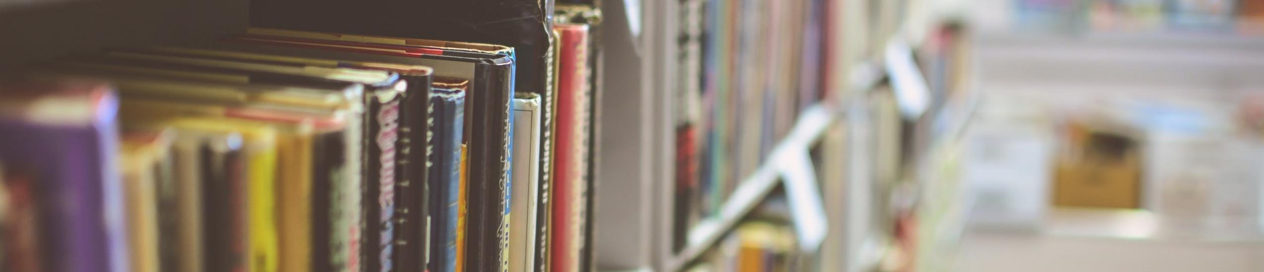 Istruzione e Diritto allo Studio