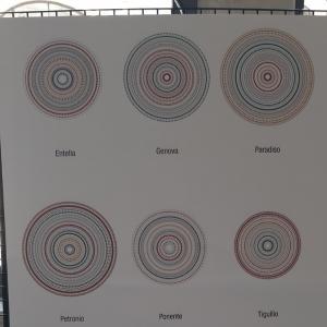 Cartelloni simboli Città Metropolitana di Genova 46