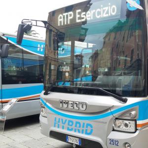 Nuovi autobus ibridi Atp 13