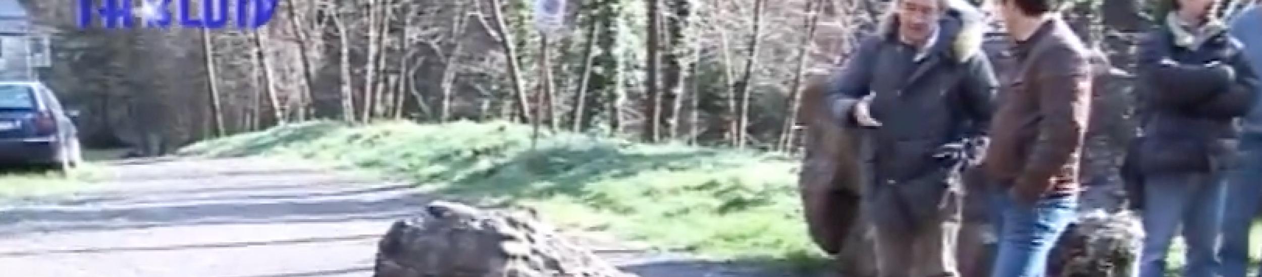 """News: Provinciale della scoglina, """"individuato il percorso più veloce"""" dice nino oliveri"""