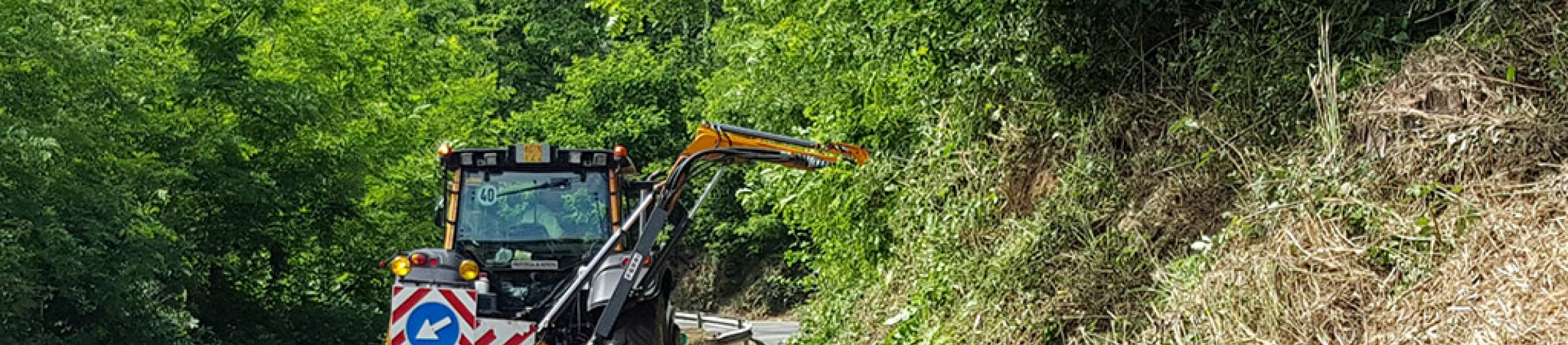 News: Valle stura, senso unico alternato per lavori forestali sulla sp 456 del turchino