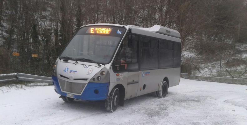 bus nella neve
