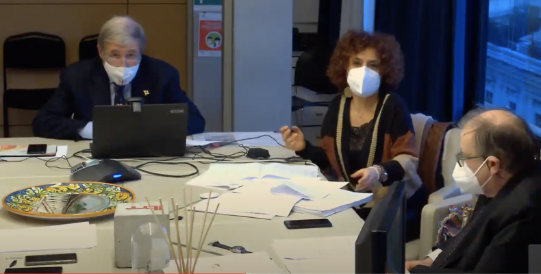 un momento della seduta del 20 gennaio in videoconferenza