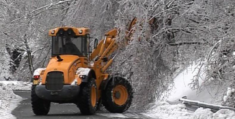 News: Maltempo: galaverna e alberi caduti. situazione e interventi sulle strade metropolitane