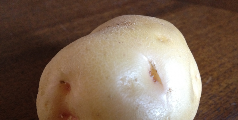 patata quarantina