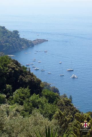 Punta Chiappa, panorama e barche